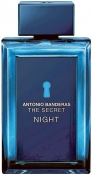 ANTONIO BANDERAS The Secret Night Туалетная вода