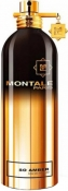 MONTALE So Amber Парфюмерная вода